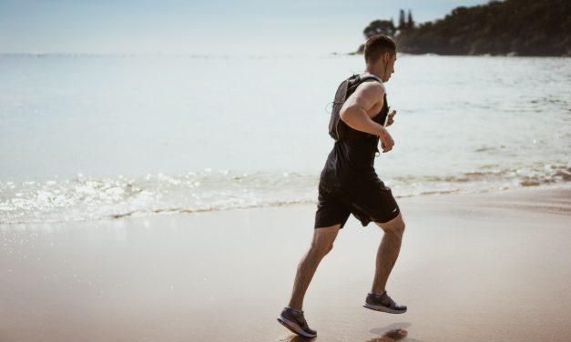 Quel est le rôle des différentes formes de protéines pour les sportifs?